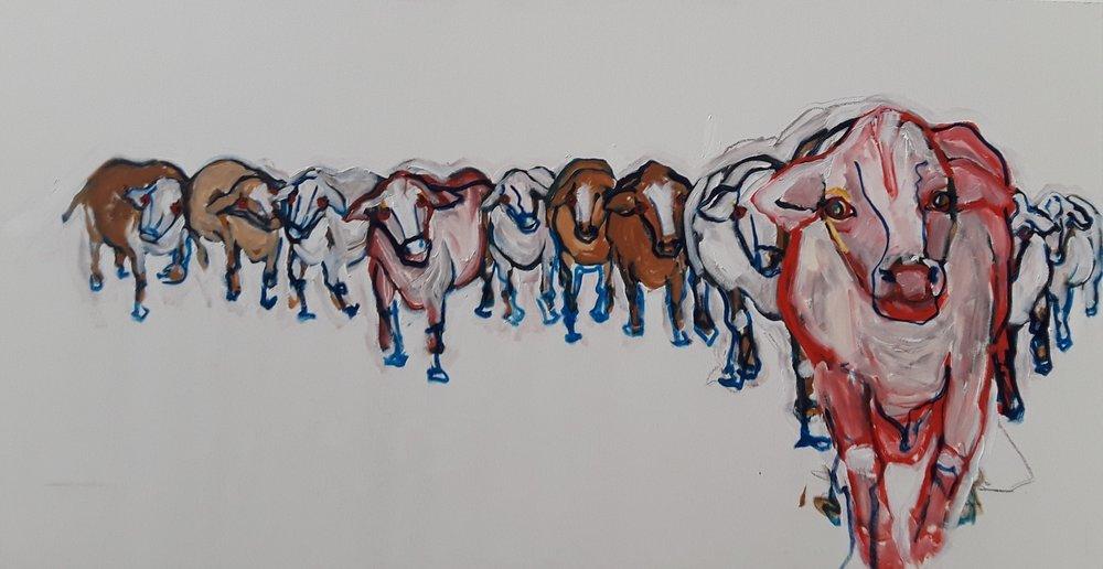 Red Cow Leading Herd.jpg