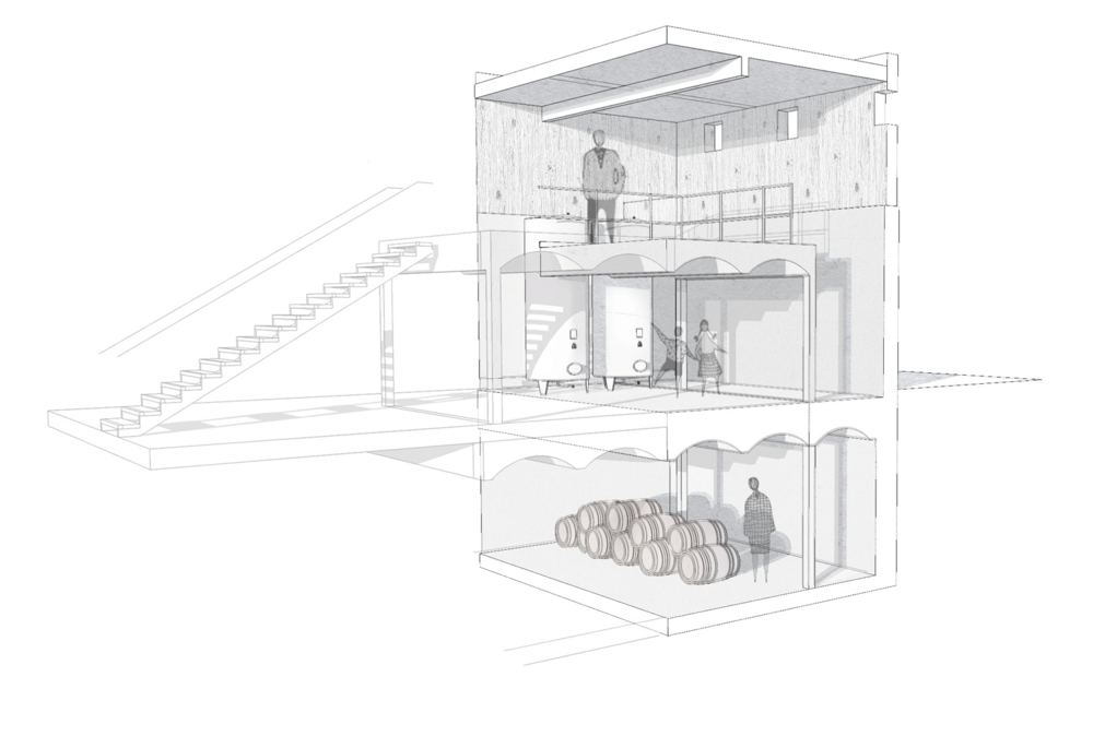 Sketch initial proposal of wine cellar and vine vat room