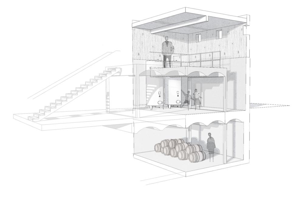 Sketch initial proposal of wine cellar and vine vat room