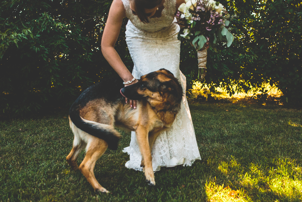Tarasoff_wedding-1067.jpg