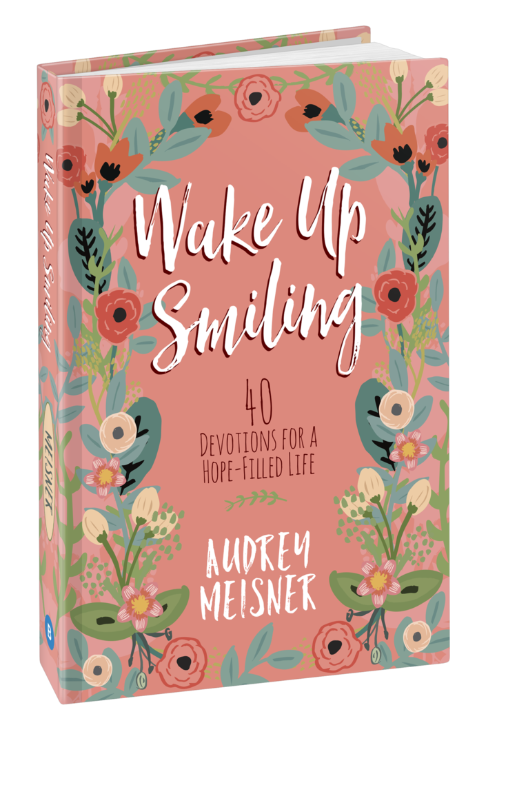 Wake-Up-Smiling-3d-Cover.png