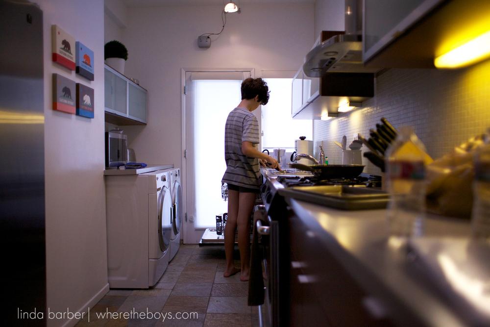 lindabarberwheretheboys942014