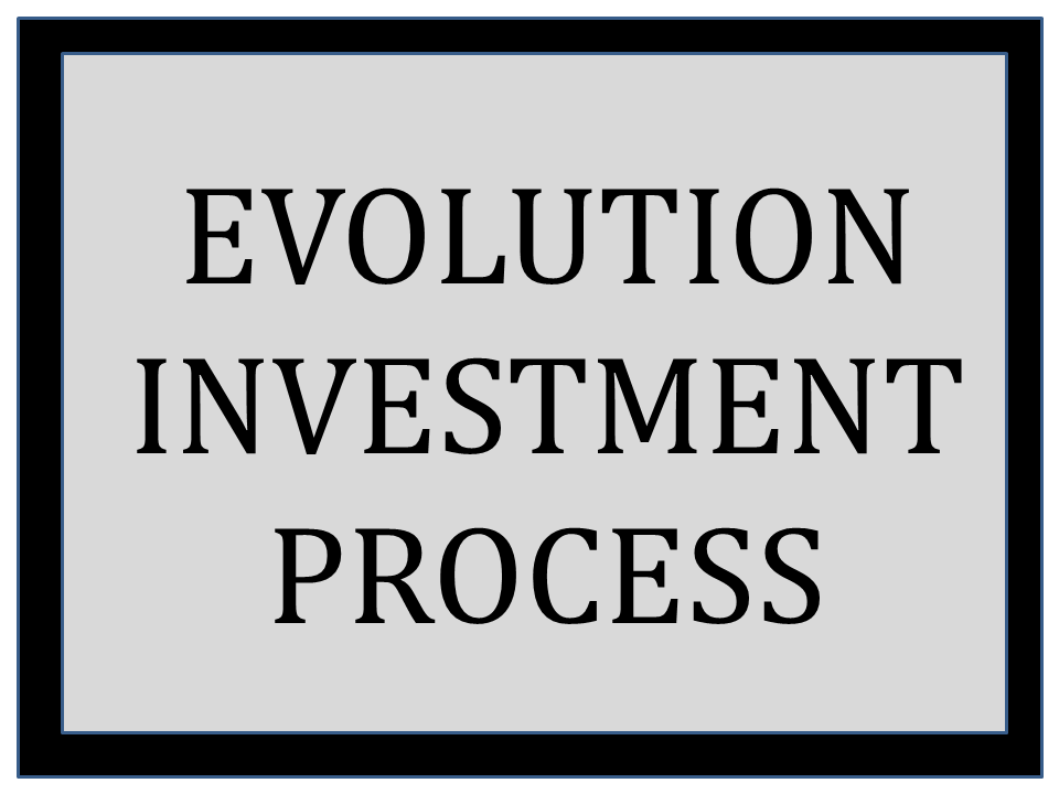 Investment Process Overview.png
