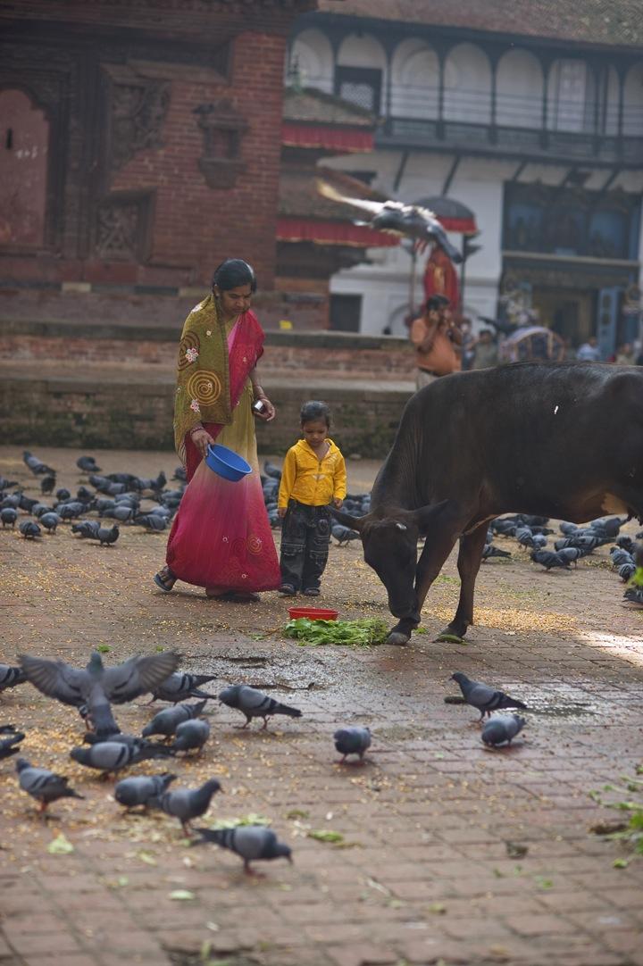 Nepal-4660.jpg