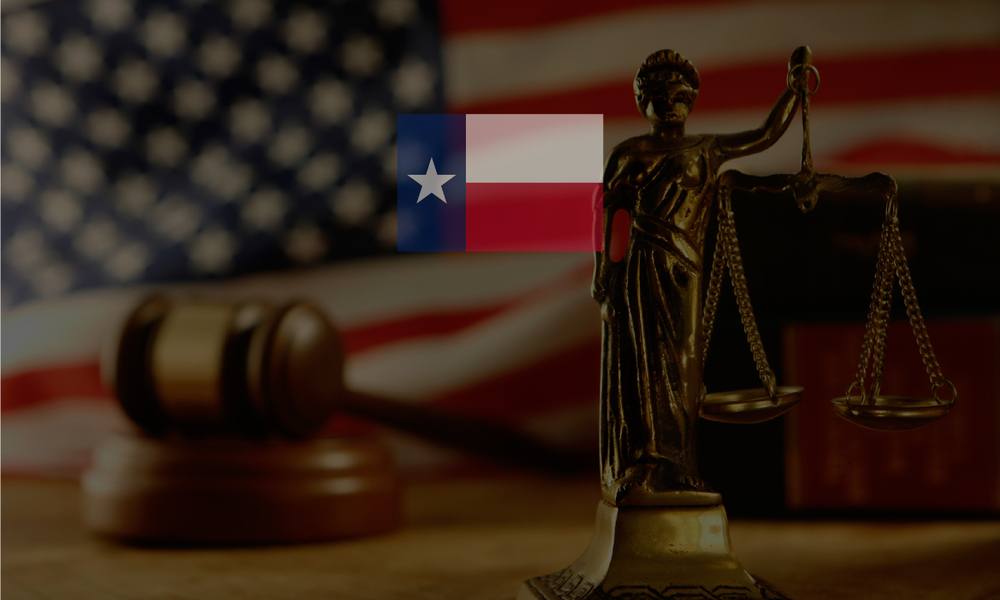 Texas Court Systems   Justice of the Peace, County Clerks, District Clerks, Municipal Courts   Intuitive, Comprehensive Information Solutions