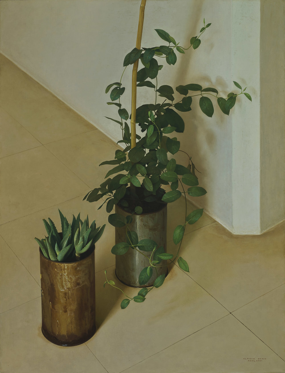 Claudio Bravo  (1936-2011)  Dos Plantas , 1977 oil on canvas 35 x 27 inches 88.9 x 68.6 centimeters