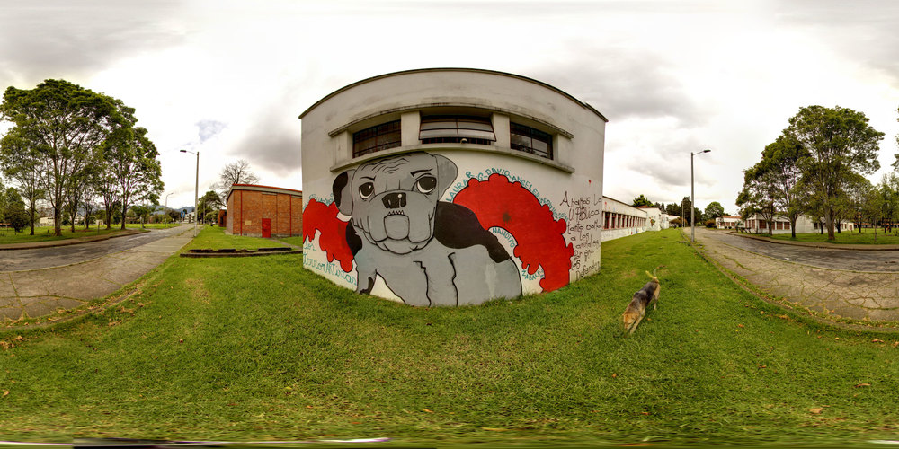 360° Dog Grafiti at the National Universidad de Bogotá