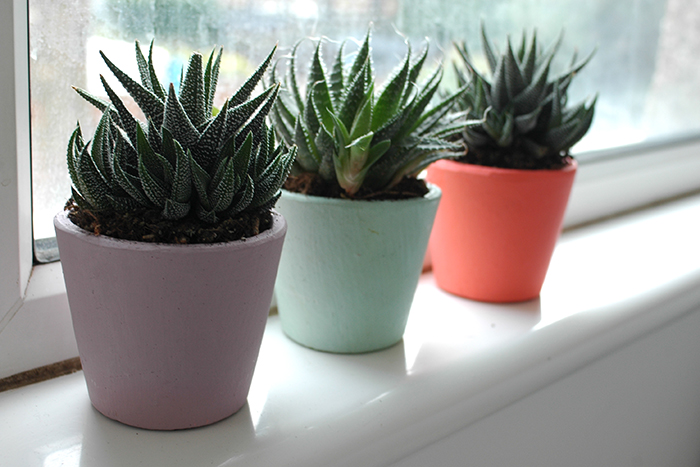 plant pots from Howkapow