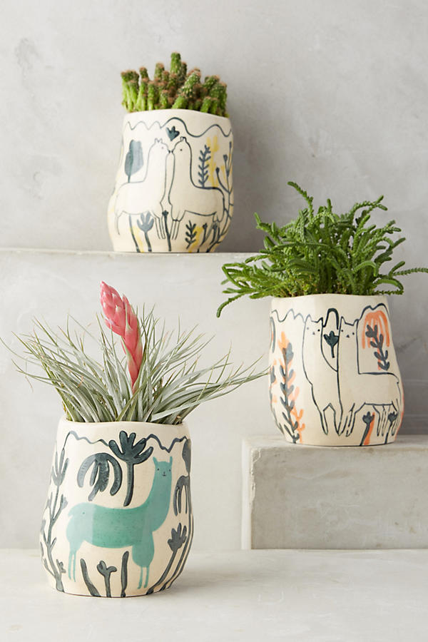 Wild Alpaca pot - Anthropologie - £16 (11cm W, 12cm H