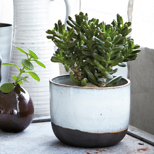 Ceramic planter - Ruby Roost - £15.95 (16.3cm dia x 12.5cm h)