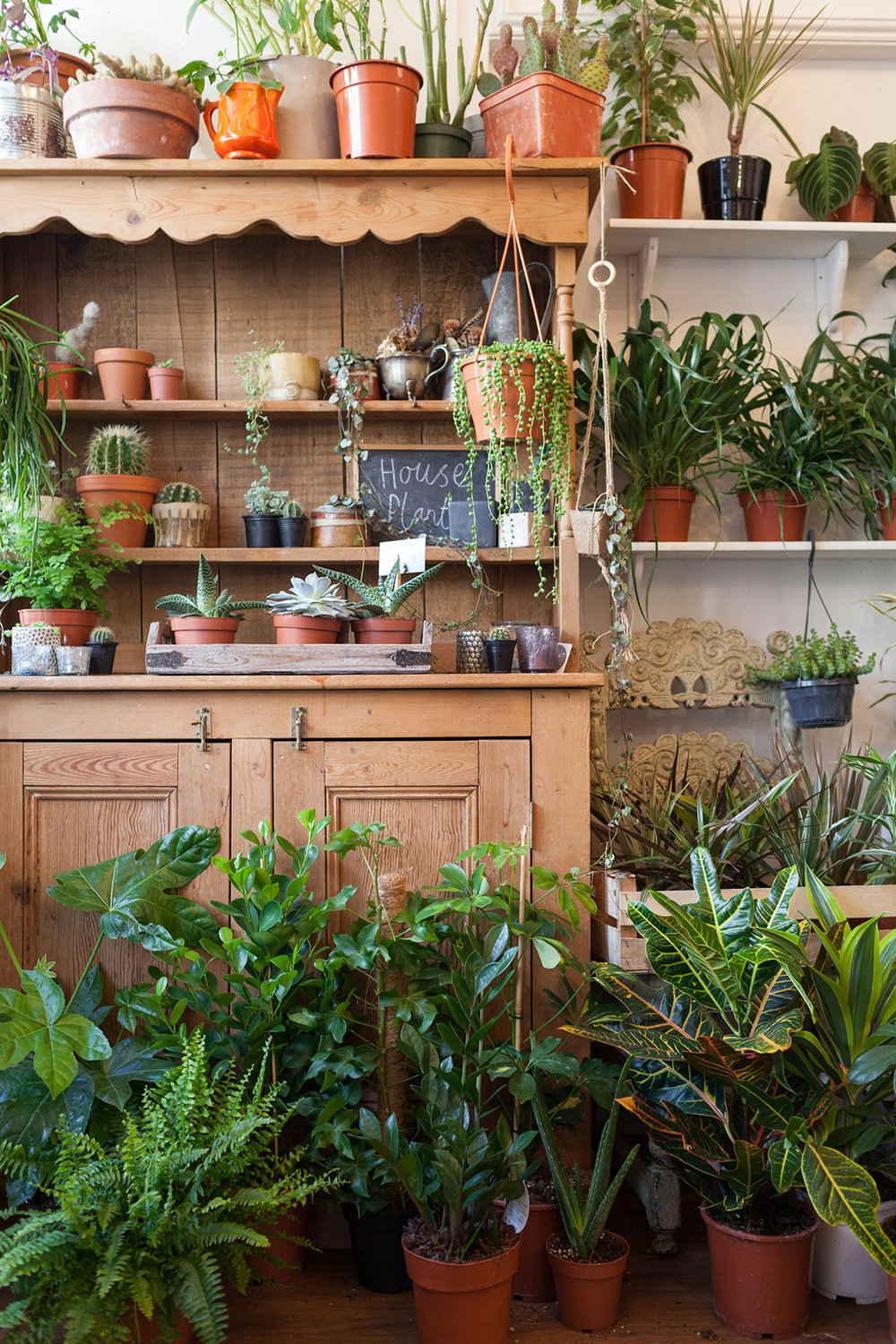 Les Fleurs flower shop featured in Issue 8. Photo: Kasia Fiszer