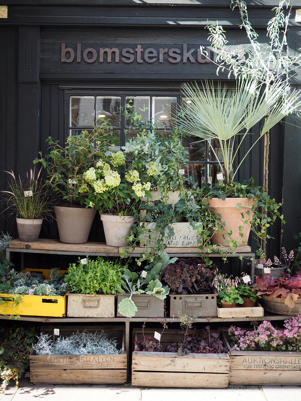 Copenhagen flower shop