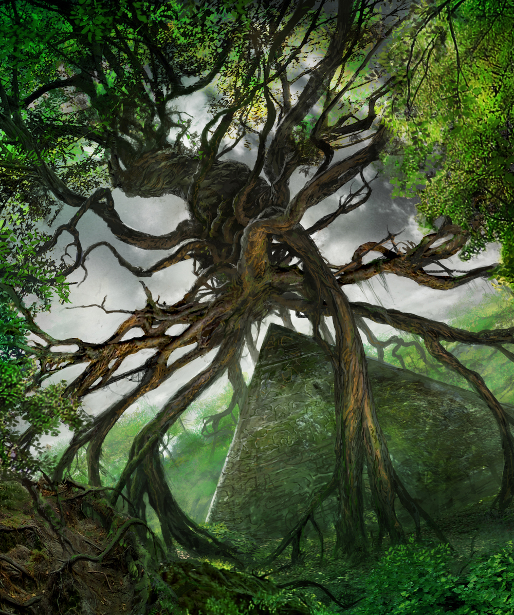 Hedron Forest © Wizards of the Coast
