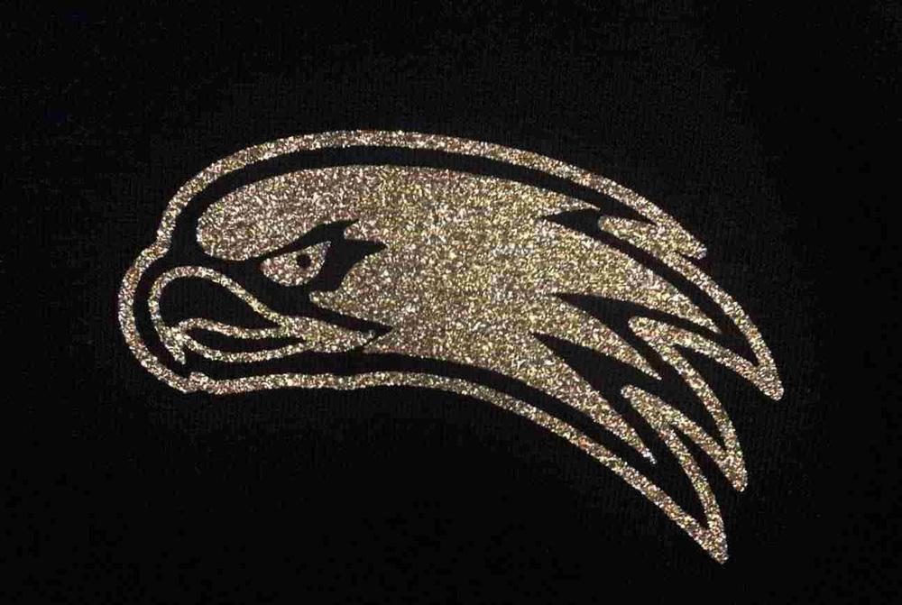 Glitter Hawk detail w.jpg