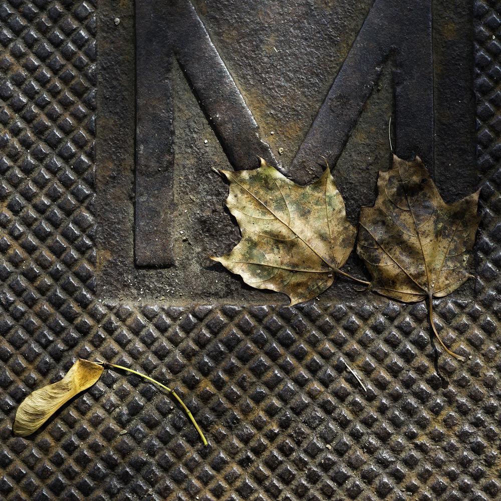 leavesmanhole.jpg