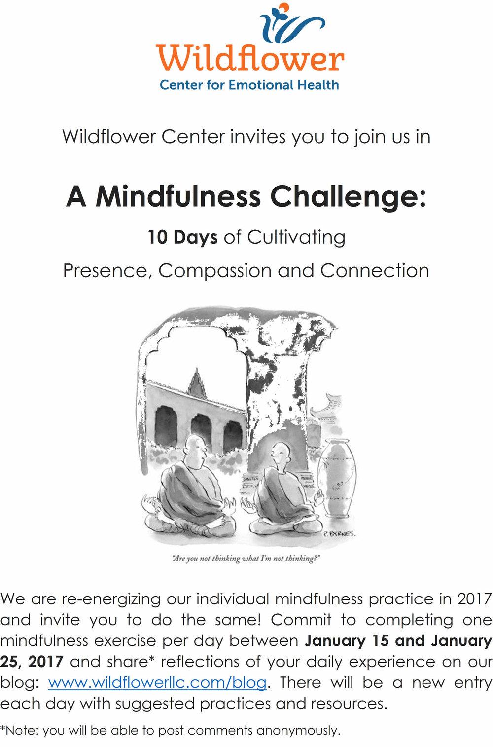 mindfulnesschallenge