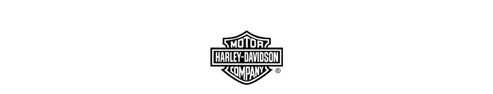H-D_logo