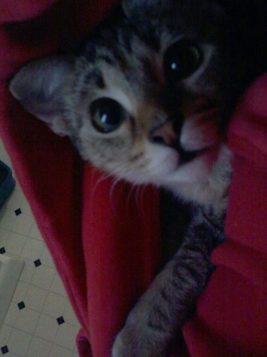 When she was still an actual baby, and I would carry her around our cold apartment in my bathrobe.