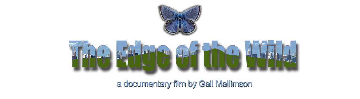 The Edge of the Wild documentary Film