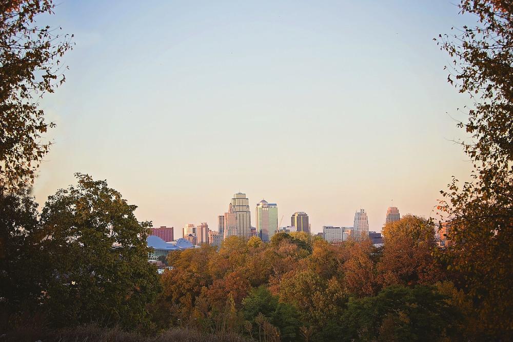 Kansas City Scout View