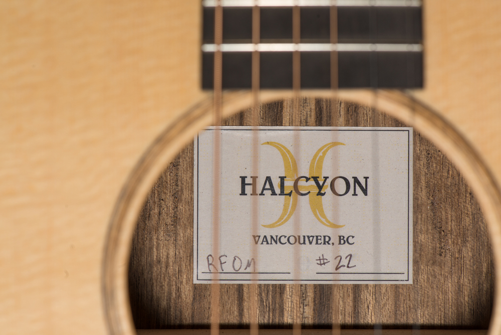 halcyonrfom22-3490.jpg