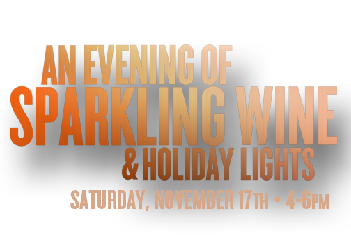 An Evening of Sparkling Wine And Holiday Lights