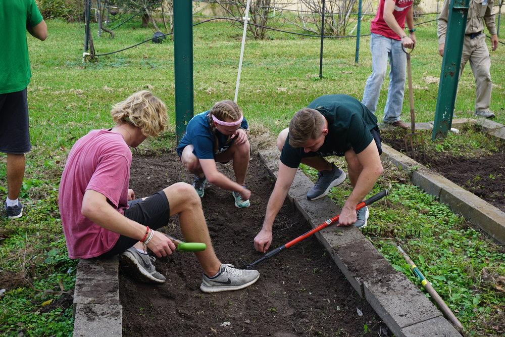 team gardening