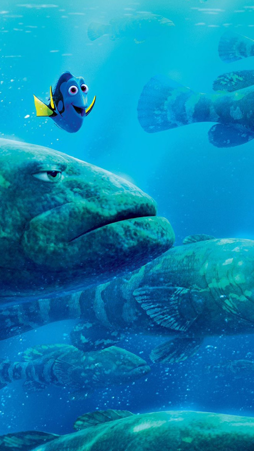 Samsung-Galaxy-S6-Android-Wallpaper-Finding-Dory-2.jpg