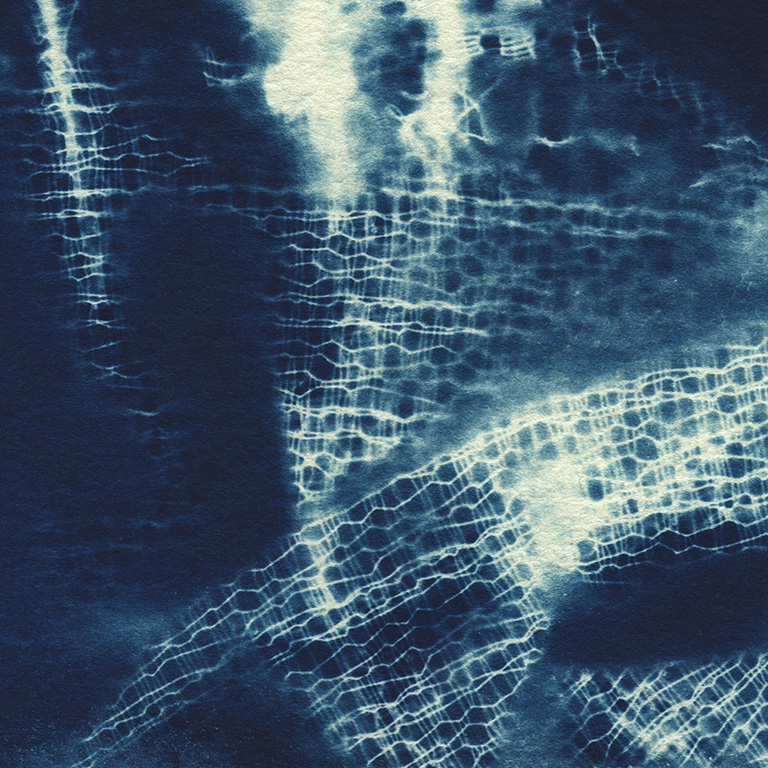 cyanotype_close up9.jpg
