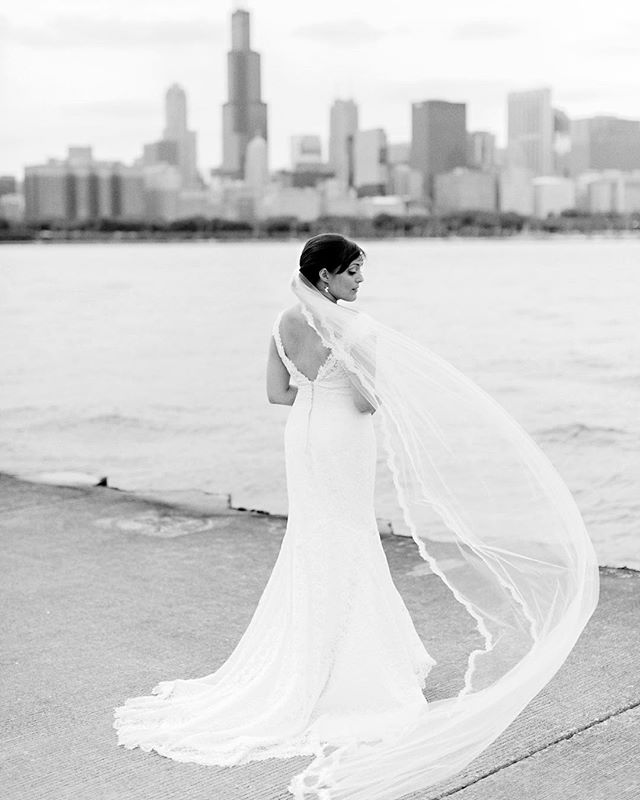 A beautiful bride, a gust of wind, Lake Michigan, and the Chicago Skyline all make for a breathtaking view for a bridal portrait. Love the veil that @kellysearly wore for her #Chicago wedding. . . . . . #chicagowedding #chicagoweddingphotographer #weddingphotography #weddingphotographer #bride #loveauthentic #makemoments #portraitperfection #junebugweddings #portrait #ryantimmphotography #weddinginspiration #moments  #togetherforever #instawedding #firstandlast #wedchicago #bridalportrait