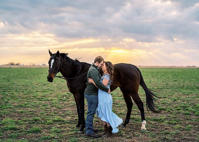 When @crusoe._ told me she wanted to go to the farm where her horse is I was pretty excited, but since it had been overcast most of the day, I had no idea we would get an amazing sunset too! @brandonhanners and @crusoe._ were both such a fun and energetic couple that were up for what ever I threw at them! Oh and Raina was pretty good in this photo too! . . . . . #chicagowedding #chicagoweddingphotographer #horseaddict #showhorse  #bourbonnaisengagement #2020bride #engagementphotos #weddingphotographer #fiance #loveauthentic #makemoments #portraitperfection #junebugweddings #portrait #ryantimmphotography #weddinginspiration #moments #love #togetherforever #instawedding #firstandlast #sonyalpha #couple #engagementsession #coloradoweddingphotographer #californiaweddingphotographer #horsefarm #marthastewartweddings #theknot #c1ickmatch