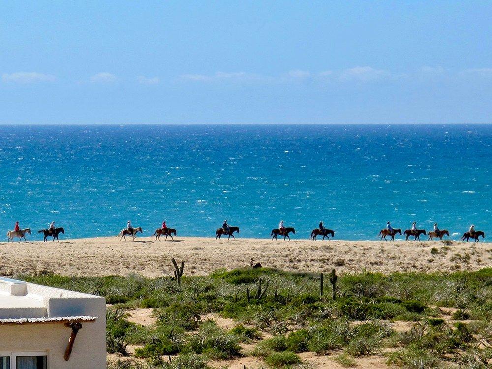 horseback (1).jpg
