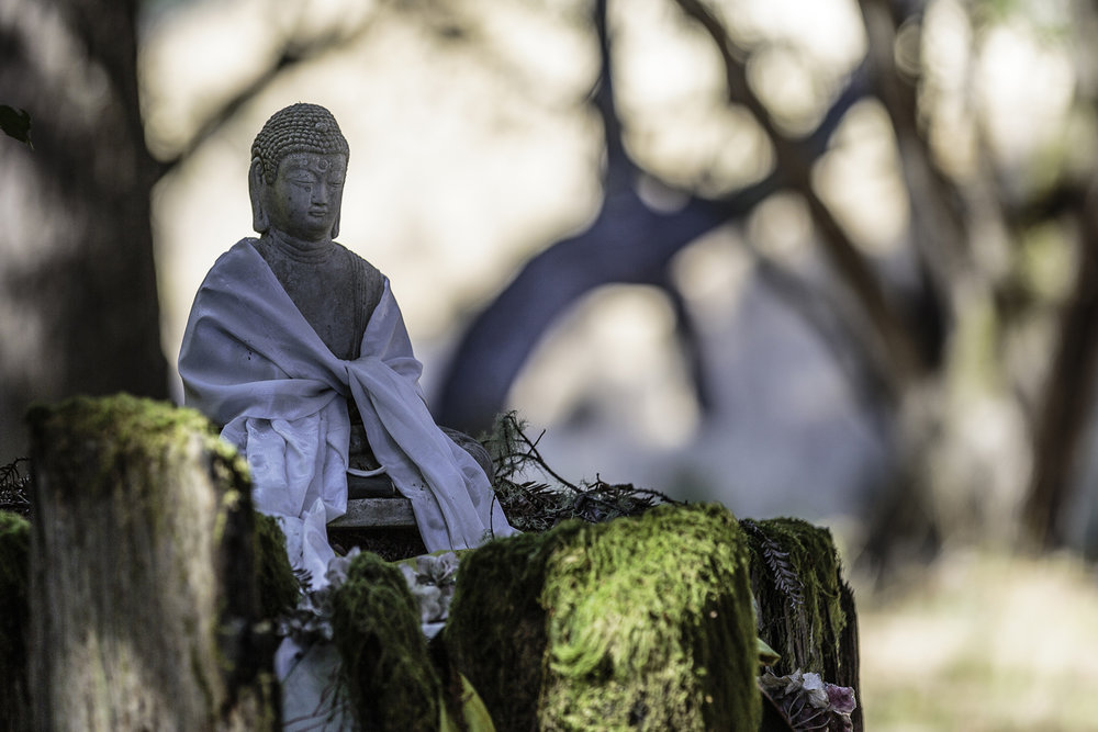 Buddha_sm.jpg
