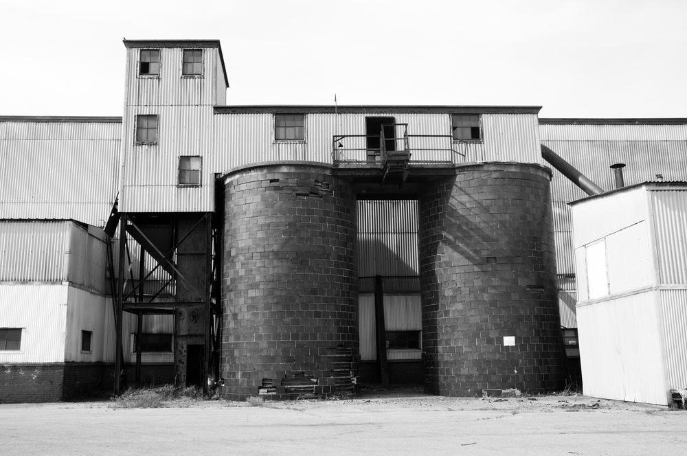 Buffalo_Decay-3015.jpg