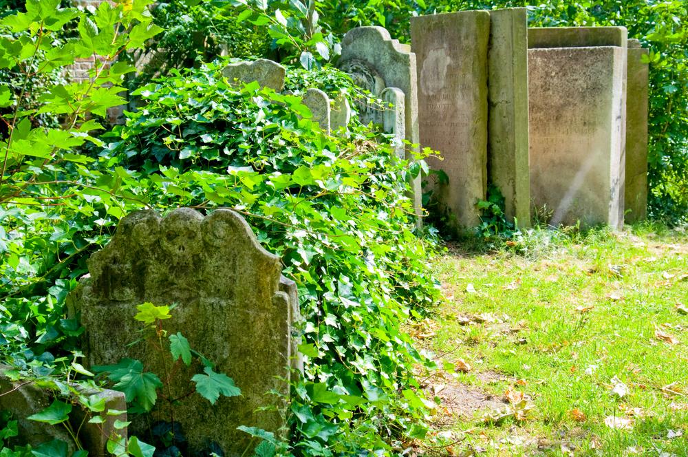 Vermeer_TheVermeerJump_London_7229.jpg