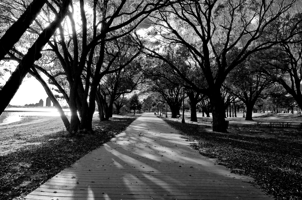 SunnysideBeach_3422.jpg