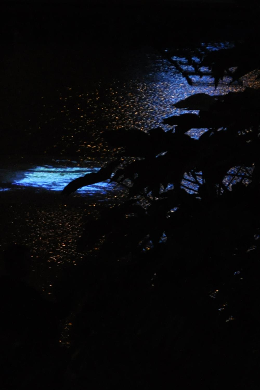 Beholder Images_Nuit Blanche_1762.jpg