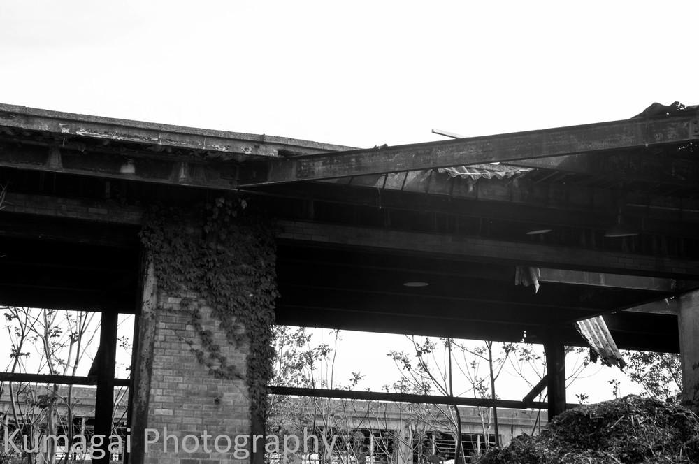 Buffalo's Decay - Industrial-3031.jpg