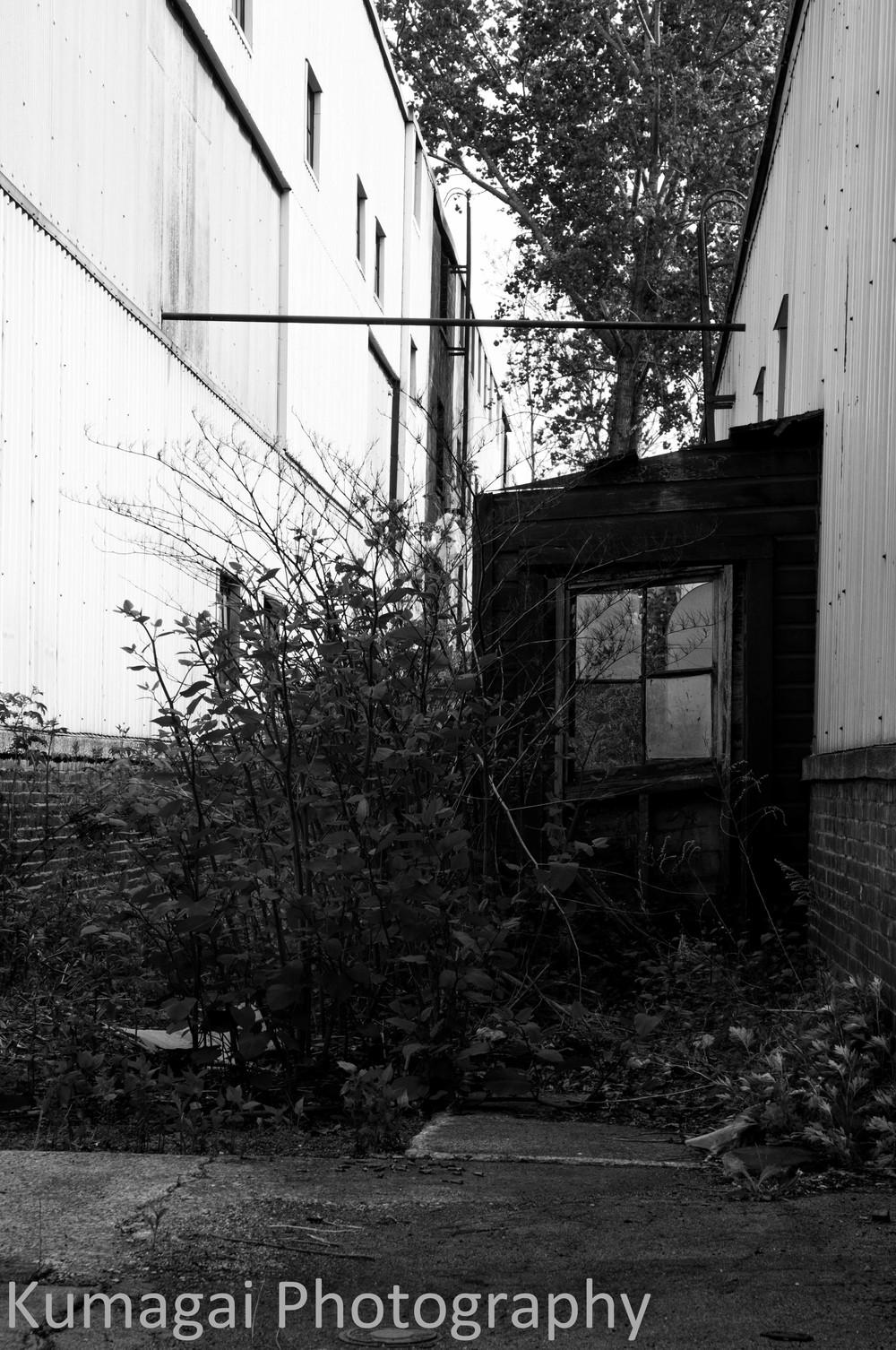 Buffalo's Decay - Industrial-3026.jpg