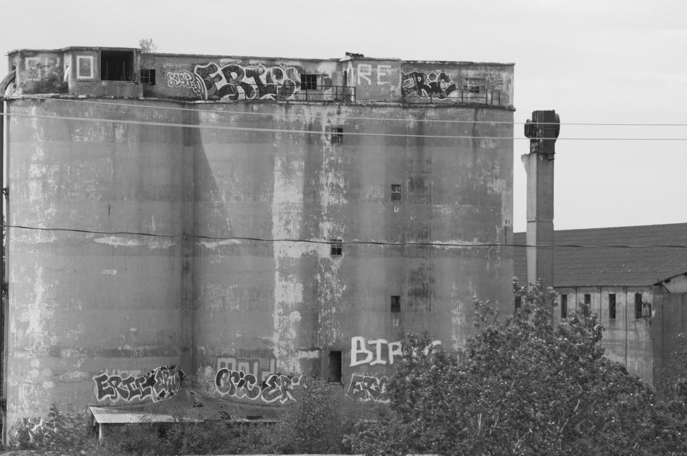 Buffalo_Decay-3210.jpg