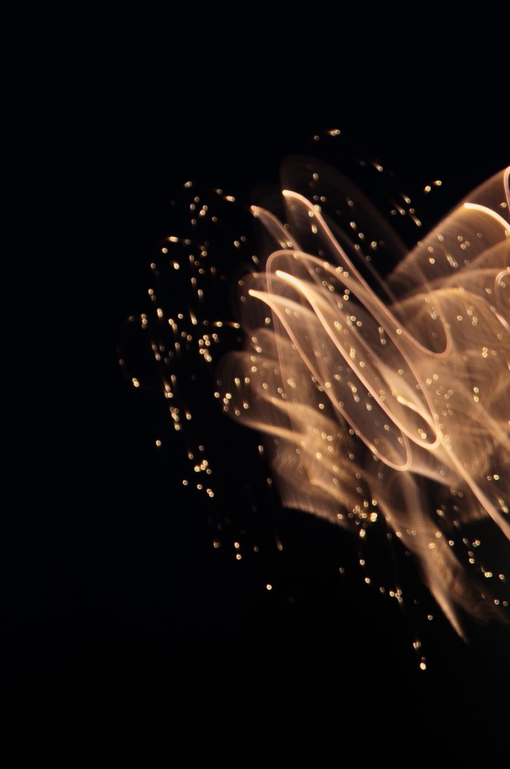 FA_Moving Lights_May 24_-7320.jpg