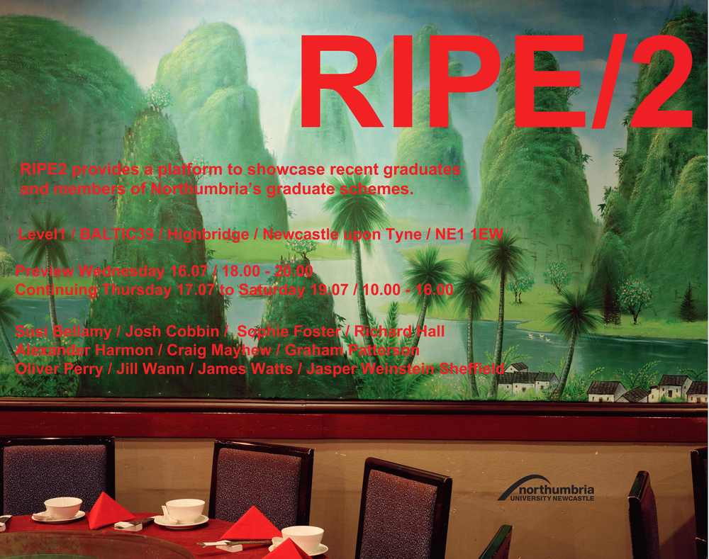 Ripe 2, Baltic 39, Newcastle, Graduate Studio Show 2014
