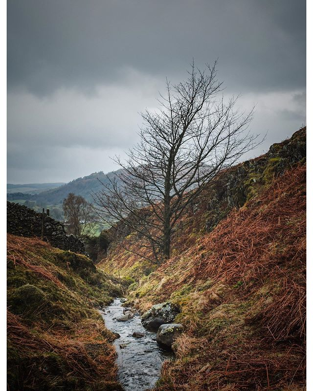 Moody. #autumn🍁 #autumn🍁🍂 #thelakedistrict #landscape #landscapephotography #thelakes #cumbria #greatoutdoors #thegreatoutdoors #britain #hills #photography #photographer #photographers #photographersofinstagram #photooftheday #instagram #instagood