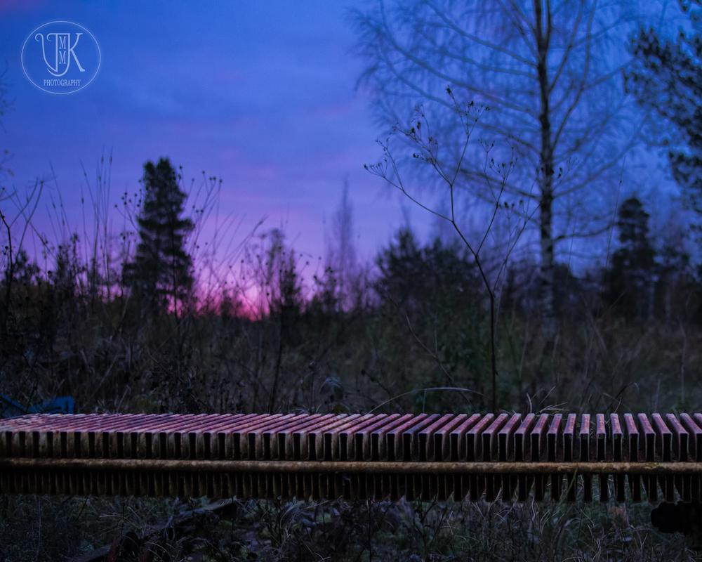 Veera Kujala VMMK photography-24.jpg