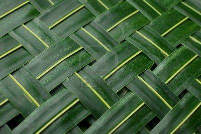 7078344-background-green-woven-palm-leaves-mat.jpg