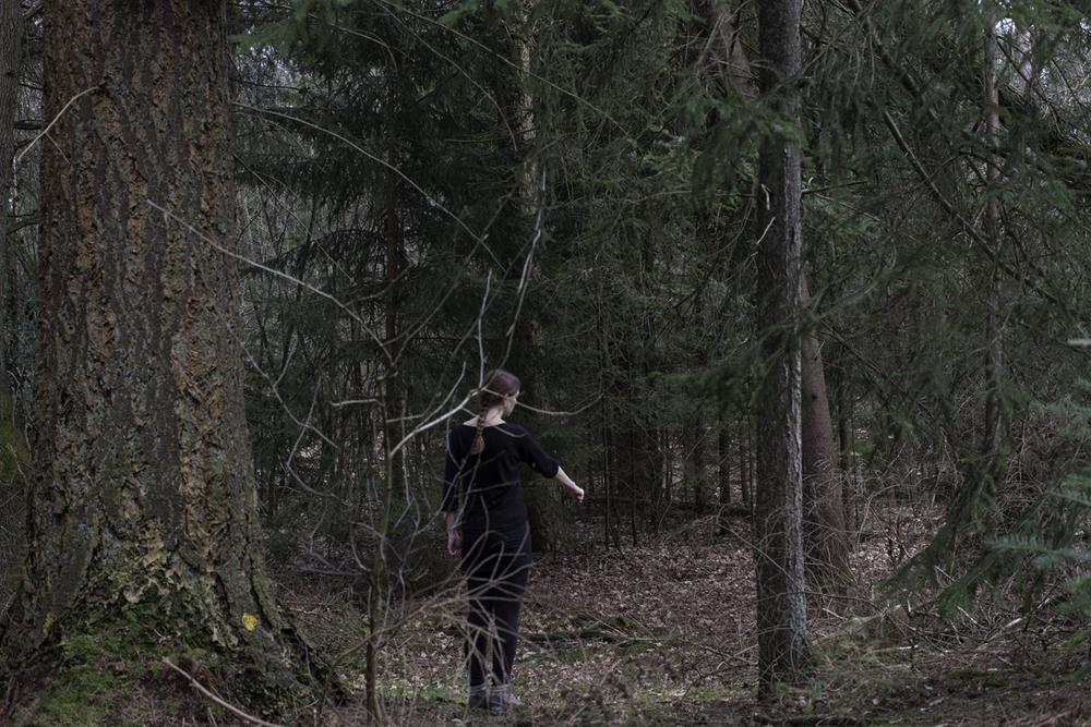 Bied de wolf je vuist aan om in te bijten. Als hij in je vuist bijt, kan hij je nergens anders bijten op dat moment.   Offer the wolf your fist to bite. If he bites your fist, he cannot bite you anywhere else at that moment.