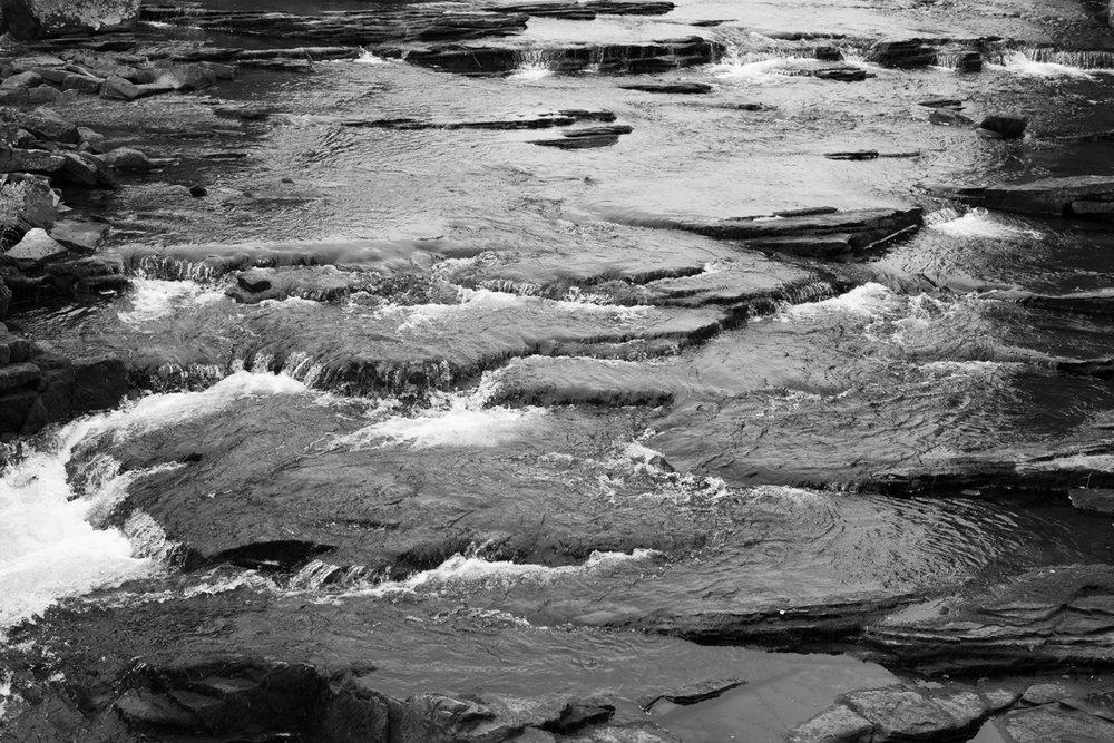 watervelden.jpg