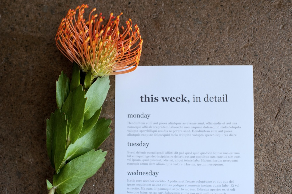 'This Week' Journaling Insert (6x12), The Serif Edition - Life album templates by LIFE:CAPTURED Inc (The modern school of memory keeping)