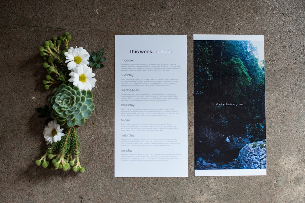 'This Week' Journaling Insert (6x12), The Sans Serif Edition - Life album templates by LIFE:CAPTURED Inc (The modern school of memory keeping)