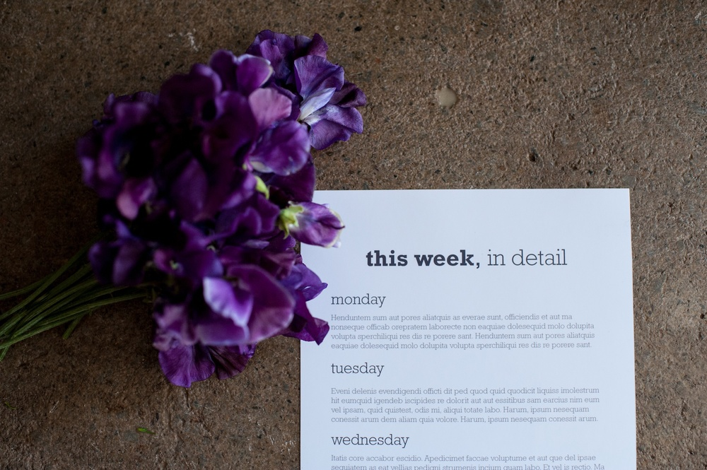 'This Week' Journaling Insert (6x12), The Rockwell Edition - Life album templates by LIFE:CAPTURED Inc (The modern school of memory keeping)